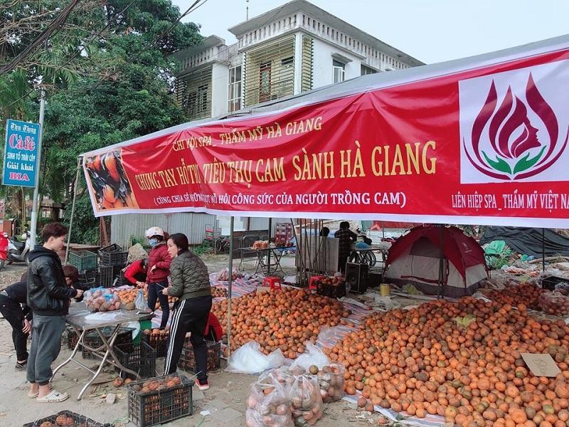 """Chi hội Spa Thẩm mỹ Hà Giang """"giải cứu"""" cam giúp người dân"""